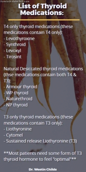 Wie kann Levothyroxin den Stoffwechsel verlangsamen und..